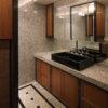 ALLの高級注文住宅「二条のマンション」詳細16